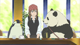 Shirokuma Cafe Episodio 13