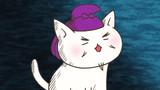 Prince Shotoku, the Super Cat!