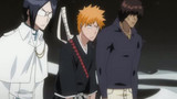 Bleach Episodio 146