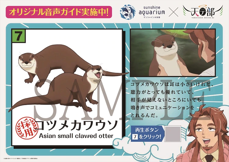 Otter information card