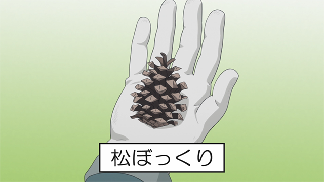 Pine Cone Laid-Back Camp