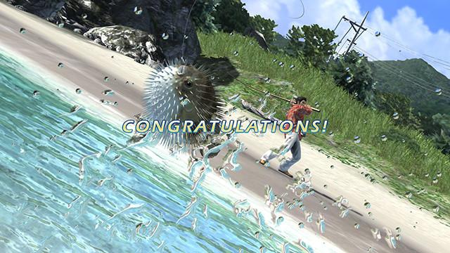 Congratulations! You've won!