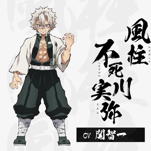 A character visual of Sanemi Shinazugawa, the Wind Pillar in Demon Slayer: Kimetsu no Yaiba.