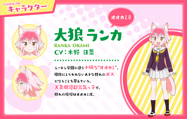 A character visual of Ranka Okami, a wolf girl high school student from the upcoming Murenase! Seton Gakuen TV anime.