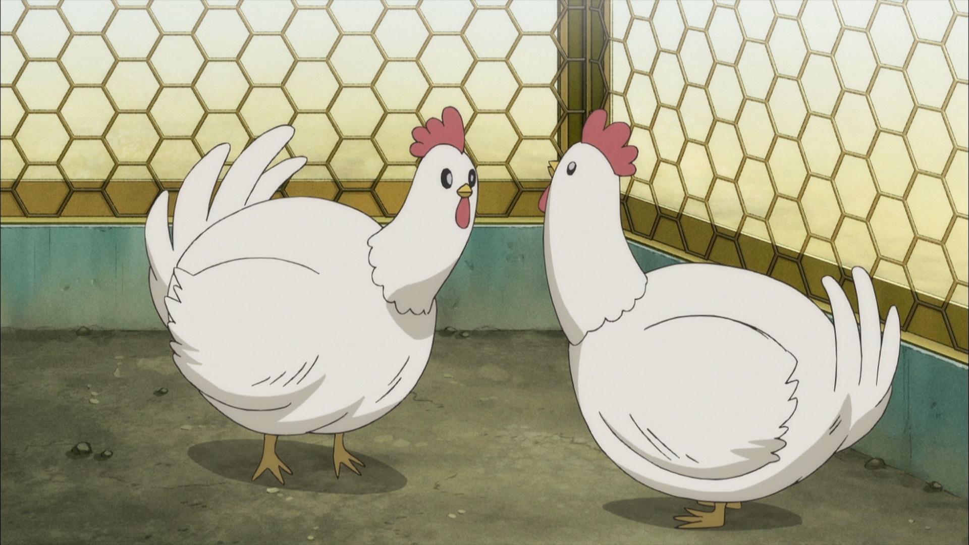 Un par de gallos se ponen filosóficos en una escena del anime de televisión Hitoribocchi no Marumaruseikatsu.
