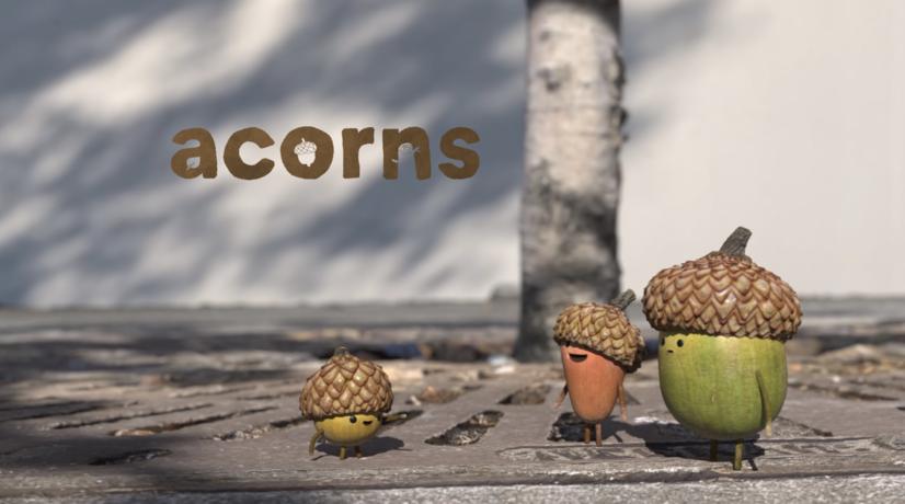 Acorns from Tonko House