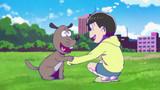Si sciolgono? | La palestra di sumo | Cani