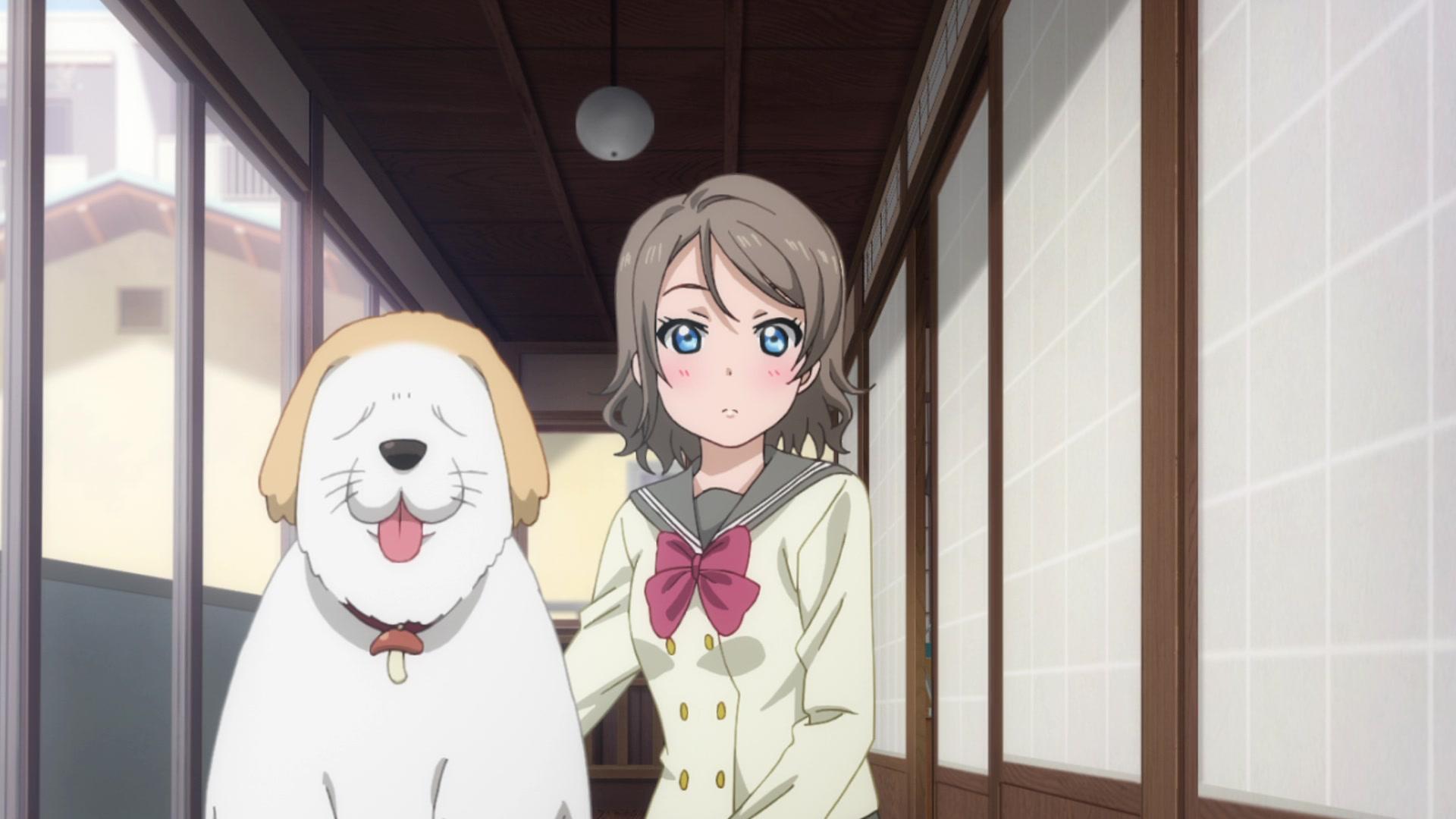 Love Live! Sunshine!! Season 2 Episode 5, Taking in A Dog, - Watch