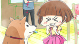 With a Dog AND a Cat, Every Day is Fun Episodio 11