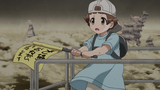 Cells at Work! Episodio 13