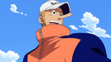 One Piece: Water 7 (207-325) Episode 231
