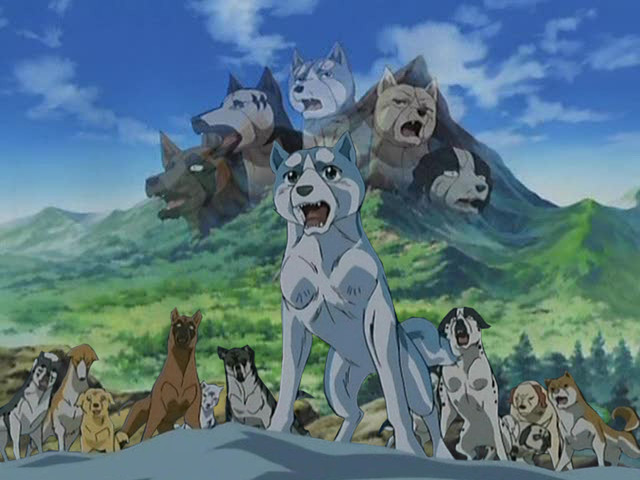 Crunchyroll Forum What Is The Best Anime Dog Shows You Have Ever