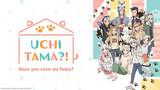 Uchitama?! Have you seen my Tama?