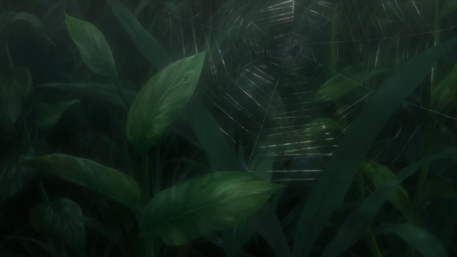 A spider web, MUSHI-SHI